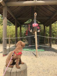 犬とリトルワールド