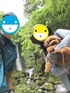 犬と養老の滝