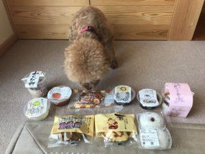 和菓子と犬