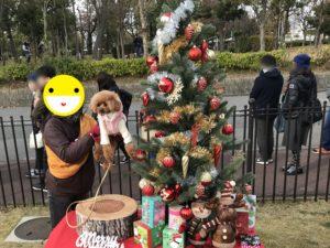 クリスマスフォトスポット