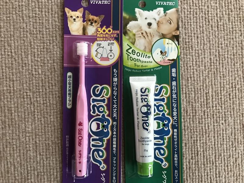 シグワン歯ブラシ